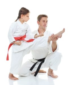A martial arts school will only be as good as the training plan developed by instructors before classes are even taught.