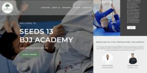 Seed's BJJ Website